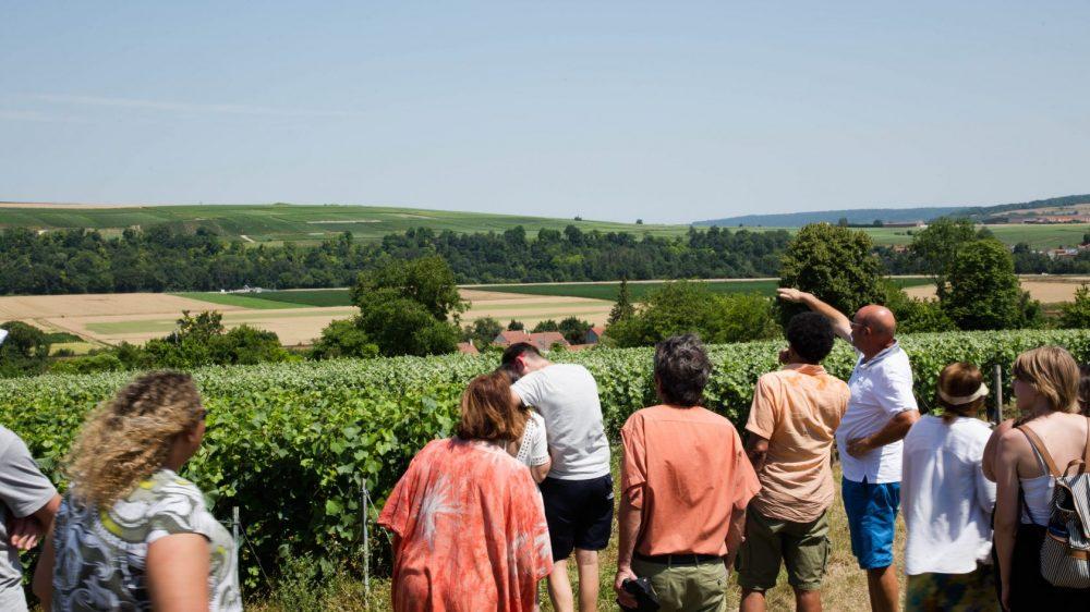 Visite-Vignes-Champagne-Bombart-Saacy-sur-Marne-01-07-18