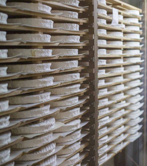Etalage-de-Brie-Fromagerie-Ganot