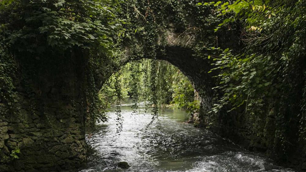 Pont-l'Aubetin-Crédit : Loi Seron